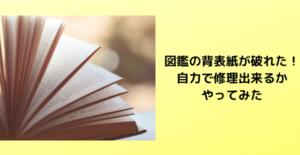 絵本 本 図鑑 修理
